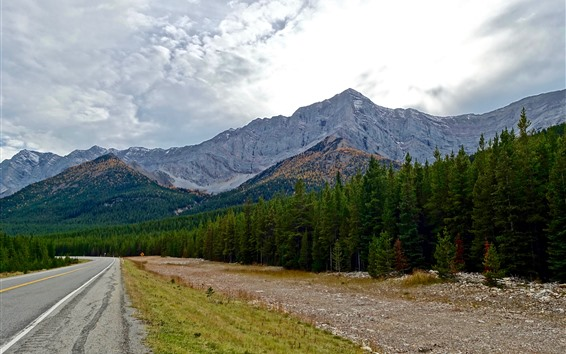 Обои Горы, лес, дорога, облака