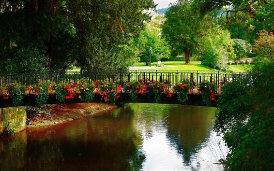 Papéis de Parede Parque, ponte, flores, rio, árvores, banco, verde