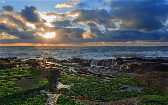 Fondos de pantalla Mar, océano, puesta de sol, rayos de sol, costa, musgo