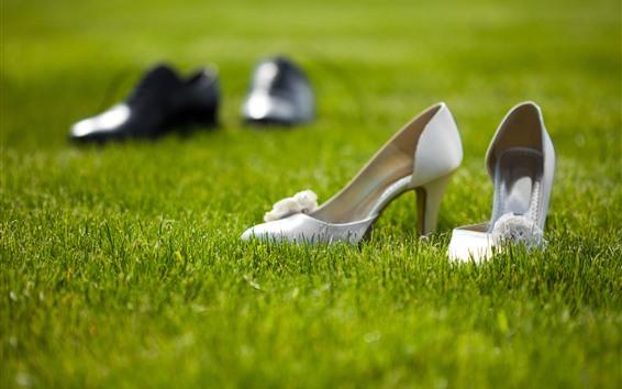 Wallpaper Shoes, grass