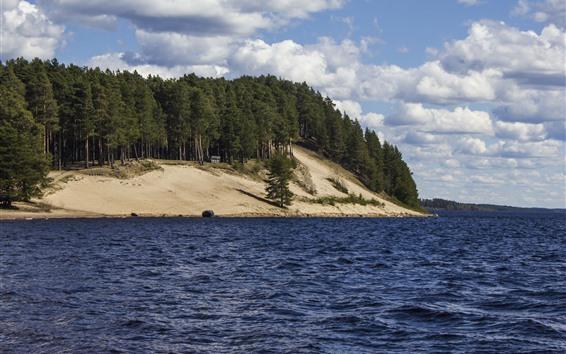 Обои Деревья, берег, море, склон, небо, облака