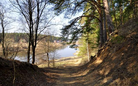 Fond d'écran Arbres, chemin, rivière, village