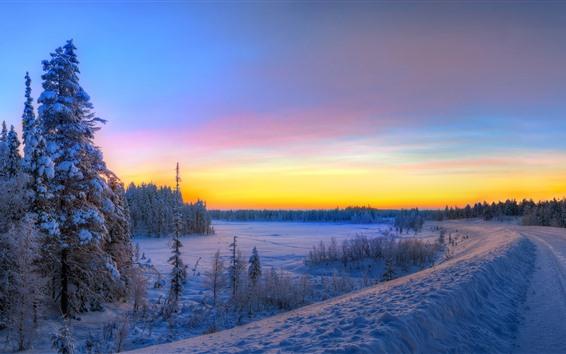 Обои Зима, снег, дорога, закат, деревья