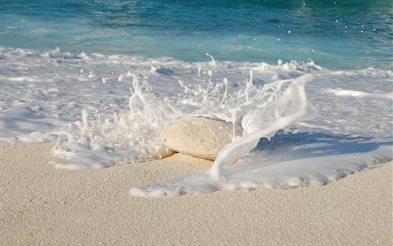 Fond d'écran Plage, mer, mousse, pierre