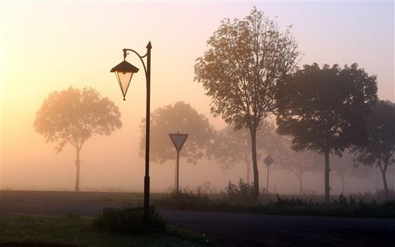 Wallpaper Lamp, road, trees, fog, dawn