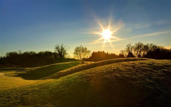 Обои Утро, солнце, холмы, трава, луг, деревья