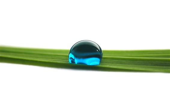Обои Одна голубая капля воды, лист зеленой травы