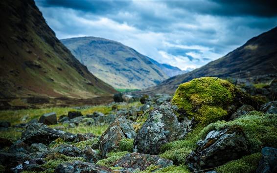 Обои Скалы, мох, зелень, горы, облака, туман