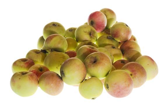 Wallpaper Some apples, white background, fruit