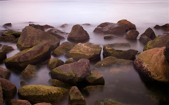 Wallpaper Some rocks, coast, fog, morning