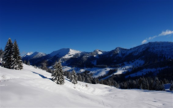 壁紙 冬、山、木、雪、白い世界