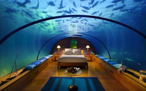 Fond d'écran Chambre à coucher, sous l'eau, poisson, verre