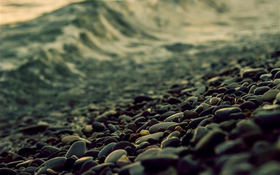 Обои Булыжник, берег, туманный