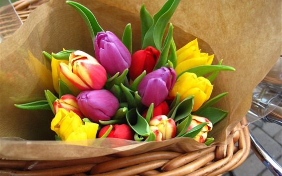 Wallpaper Colorful tulips, bouquet, basket