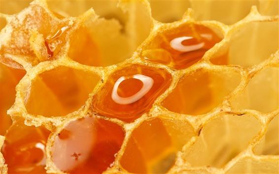 Papéis de Parede Querida, doce, favo de mel