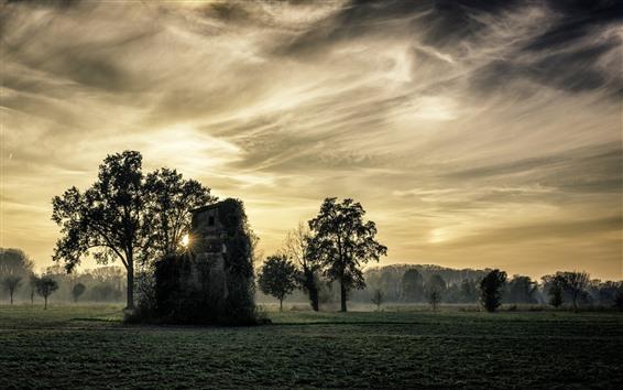 Papéis de Parede Itália, árvores, campo, cabana, névoa, raios de sol, manhã