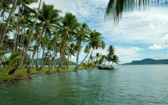 Обои Тропика, море, побережье, пальмы, остров, облака