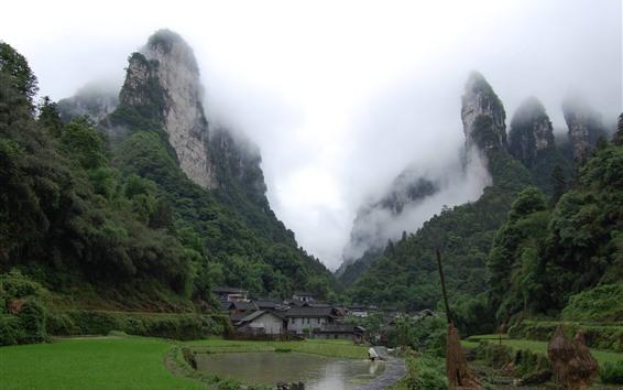 Papéis de Parede Vila, campo, montanhas, verde, nevoeiro, China