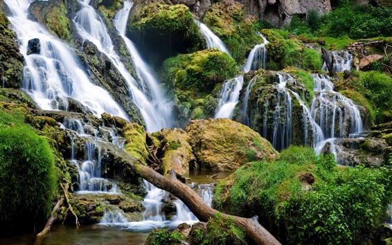 壁紙 滝、苔、岩、自然の風景