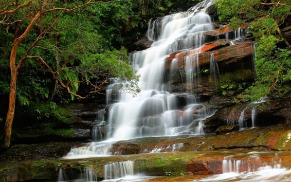 壁紙 滝、岩、木