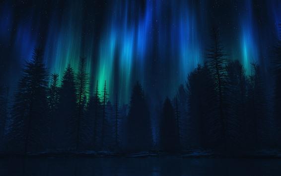 Обои Северное сияние, деревья, ночь, силуэт