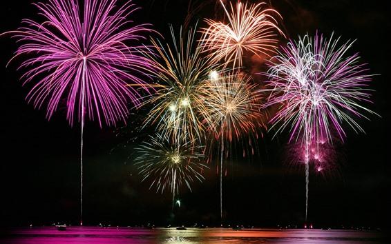 Fond d'écran Beau feu d'artifice, nuit, lac
