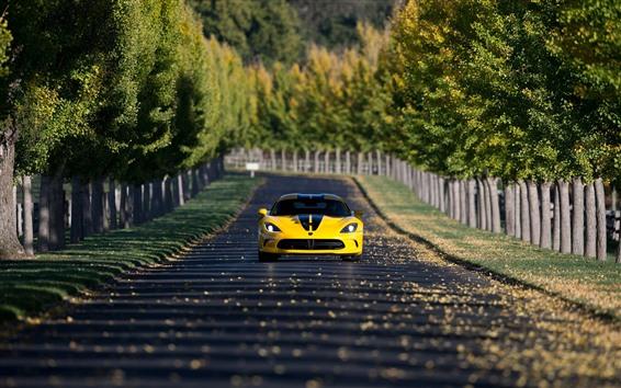 Wallpaper Dodge SRT Viper yellow car front view, road, trees
