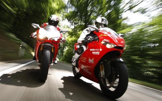 Wallpaper Ducati motorcycle, racing, speed, trees
