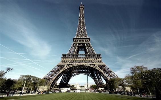 Обои Эйфелева башня, Париж, луг, деревья, люди
