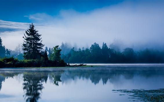 Fond d'écran Lac, calme, arbres, brouillard, matin