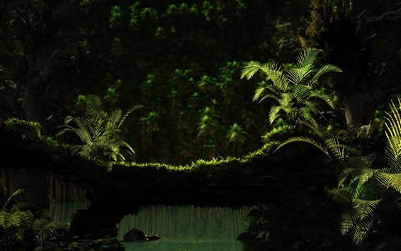 Papéis de Parede Cenário natural, samambaias, verde, grama, água