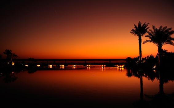 Papéis de Parede Dubai, noite, rio, palmeiras, luzes, ponte, silhueta