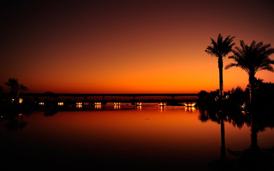 Обои Дубай, ночь, река, пальмы, огни, мост, силуэт