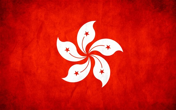 Wallpaper Hong Kong flag, bauhinia flower