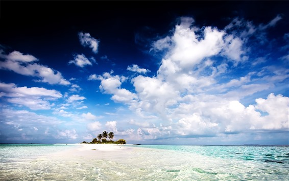 Wallpaper Island, palm trees, blue sea, white clouds, tropical