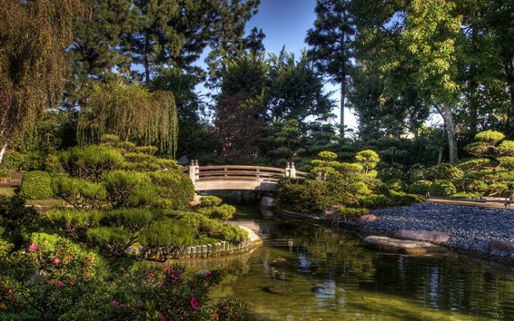Wallpaper Park, bridge, pond, trees