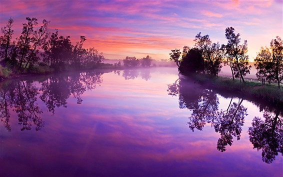 Wallpaper River, trees, fog, water reflection, morning, purple