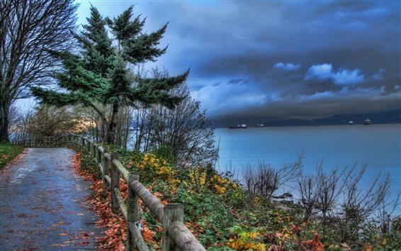 壁纸 道路,树木,篱笆,河流,植物,云彩