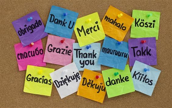 배경 화면 감사합니다, 다른 언어, 다채로운 종이