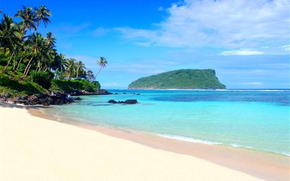 桌布 海灘,棕櫚樹,島嶼,藍色的大海