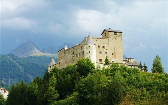 Обои Замок, вершина горы, деревья, зеленый