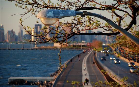 Wallpaper City, road light, twigs