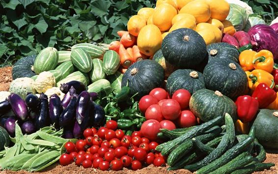 Papéis de Parede Colheita, vegetais, pepino, abóbora, tomate, pimentão