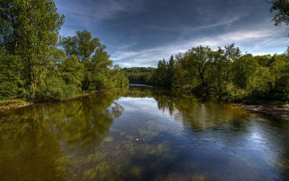Papéis de Parede Natureza paisagem, rio, árvores, pato, nuvens