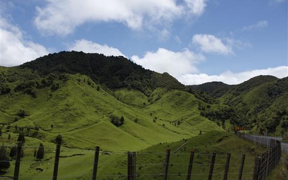 배경 화면 뉴질랜드, 산, 녹색, 울타리, 구름