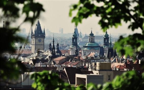 Fond d'écran Prague, République tchèque, ville, bâtiments, feuilles vertes