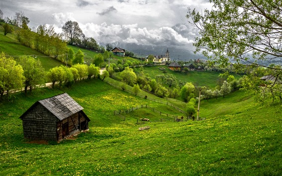 Wallpaper Romania, green, trees, clouds, beautiful village
