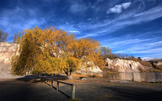 Papéis de Parede Árvore, folhas amarelas, rio, cerca, sombra, outono