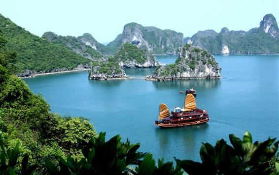 Papéis de Parede Tropical, mar azul, barco, ilha, folhas