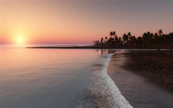 Wallpaper Beach, coast, sea, palm trees, sunset, tropical